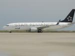 いもつさんが、徳島空港で撮影した全日空 737-881の航空フォト(写真)