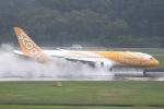 Tomo-Papaさんが、シンガポール・チャンギ国際空港で撮影したスクート 787-8 Dreamlinerの航空フォト(写真)