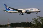 hiro727さんが、伊丹空港で撮影した全日空 787-881の航空フォト(写真)