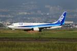 JA946さんが、伊丹空港で撮影した全日空 737-881の航空フォト(写真)