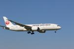 OS52さんが、成田国際空港で撮影した日本航空 787-846の航空フォト(写真)