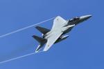 DBACKさんが、那覇空港で撮影した航空自衛隊 F-15DJ Eagleの航空フォト(写真)