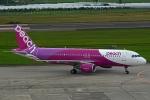 kansai-spotterさんが、仙台空港で撮影したピーチ A320-214の航空フォト(写真)