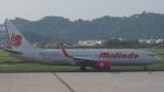 Courierpochiさんが、ペナン国際空港で撮影したマリンド・エア 737-8GPの航空フォト(写真)