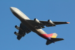 Koenig117さんが、関西国際空港で撮影したアシアナ航空 747-48EMの航空フォト(写真)