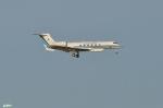 妄想竹さんが、羽田空港で撮影した海上保安庁 G-V Gulfstream Vの航空フォト(写真)