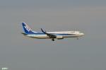 妄想竹さんが、羽田空港で撮影した全日空 737-881の航空フォト(写真)