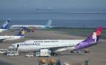 VIPERさんが、羽田空港で撮影したハワイアン航空 A330-243の航空フォト(写真)