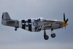 romyさんが、ペインフィールド空港で撮影したHISTORIC FLIGHT FOUNDATION P-51B Mustangの航空フォト(写真)