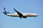 sonnyさんが、成田国際空港で撮影した全日空 737-881の航空フォト(写真)