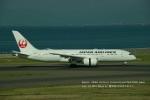 かみきりむしさんが、中部国際空港で撮影した日本航空 787-8 Dreamlinerの航空フォト(写真)