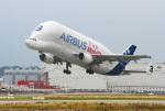 りんたろうさんが、ハンブルク・フィンケンヴェルダー空港 で撮影したエアバス・トランスポート・インターナショナル A300B4-608STの航空フォト(写真)