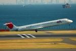 フリューゲルさんが、羽田空港で撮影した日本航空 MD-81 (DC-9-81)の航空フォト(写真)