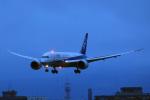 syo12さんが、函館空港で撮影した全日空 787-881の航空フォト(写真)