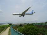 デウスーラ294さんが、伊丹空港で撮影した全日空 787-881の航空フォト(写真)