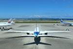 yousei-pixyさんが、那覇空港で撮影した全日空 787-881の航空フォト(写真)