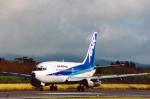 菊池 正人さんが、石垣空港で撮影したエアーニッポン 737-281/Advの航空フォト(写真)