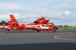 Speed Birdさんが、東京ヘリポートで撮影した東京消防庁航空隊 AS365N2 Dauphin 2の航空フォト(写真)