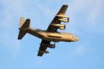 Koenig117さんが、嘉手納飛行場で撮影したアメリカ空軍 MC-130J Herculesの航空フォト(写真)