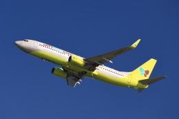 JA946さんが、関西国際空港で撮影したジンエアー 737-8SHの航空フォト(写真)