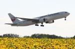 MI-YANさんが、女満別空港で撮影した日本航空 767-346の航空フォト(写真)