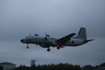 はるたかさんが、入間飛行場で撮影した航空自衛隊 YS-11A-402EBの航空フォト(写真)