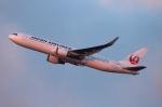 twining07さんが、成田国際空港で撮影した日本航空 767-346/ERの航空フォト(写真)