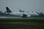 Bonnie Bulaさんが、ナンディ国際空港で撮影したニュージーランド航空 A320-232の航空フォト(写真)