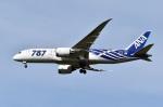 sonnyさんが、成田国際空港で撮影した全日空 787-8 Dreamlinerの航空フォト(写真)