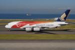 きんめいさんが、中部国際空港で撮影したシンガポール航空 A380-841の航空フォト(写真)