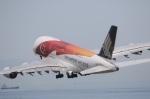 ドラパチさんが、中部国際空港で撮影したシンガポール航空 A380-841の航空フォト(写真)