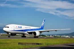JA946さんが、伊丹空港で撮影した全日空 777-281の航空フォト(写真)