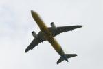 クルーズさんが、成田国際空港で撮影したセブパシフィック航空 A320-214の航空フォト(写真)