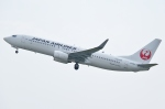 Wings Flapさんが、岡山空港で撮影した日本航空 737-846の航空フォト(写真)