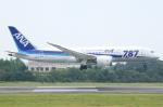 Wings Flapさんが、岡山空港で撮影した全日空 787-881の航空フォト(写真)