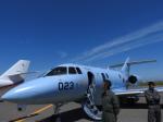 鬼の手さんが、札幌飛行場で撮影した航空自衛隊 U-125A(Hawker 800)の航空フォト(写真)