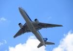 きのちゃんさんが、伊丹空港で撮影した全日空 777-281の航空フォト(写真)