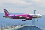 Orange linerさんが、関西国際空港で撮影したピーチ A320-214の航空フォト(写真)