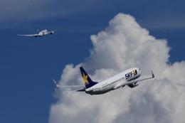 ランウェイさんが、羽田空港で撮影したスカイマーク 737-8Q8の航空フォト(写真)