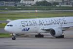 車掌さんが、伊丹空港で撮影した全日空 777-281の航空フォト(写真)