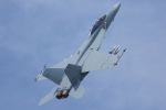 Tomo-Papaさんが、フェアフォード空軍基地で撮影したアメリカ海軍 F/A-18F Super Hornetの航空フォト(写真)