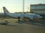 TUILANYAKSUさんが、ドモジェドヴォ空港で撮影したウラル航空 A320-214の航空フォト(写真)