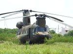 frankさんが、石垣空港で撮影した陸上自衛隊 CH-47JAの航空フォト(写真)
