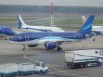 TUILANYAKSUさんが、ドモジェドヴォ空港で撮影したアゼルバイジャン航空 A319-111の航空フォト(写真)