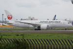 チャッピー・シミズさんが、成田国際空港で撮影した日本航空 787-8 Dreamlinerの航空フォト(写真)