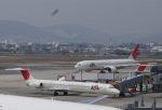 TUILANYAKSUさんが、伊丹空港で撮影した日本航空 MD-81 (DC-9-81)の航空フォト(写真)