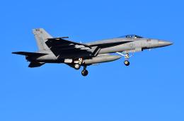 はるかのパパさんが、厚木飛行場で撮影したアメリカ海軍 F/A-18E Super Hornetの航空フォト(写真)