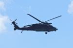 しんさんが、茨城空港で撮影した航空自衛隊 UH-60Jの航空フォト(写真)