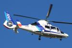 なごやんさんが、名古屋飛行場で撮影したオールニッポンヘリコプター AS365N3 Dauphin 2の航空フォト(写真)