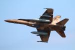 なごやんさんが、岩国空港で撮影したアメリカ海軍 F/A-18の航空フォト(写真)